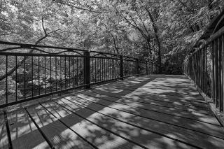 photograph of Minnehaha Creek, Minneapolis